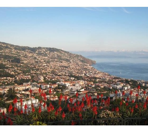 acache.virtualtourist.com_5042178_Things_To_Do_Madeira_Island.jpg