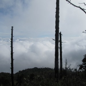 Acatenango volcano climping - the cloud is coming